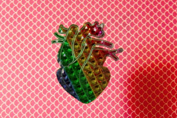 heart1_orig