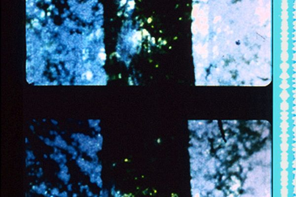 01-filmstrip-trees-of-syntax_orig