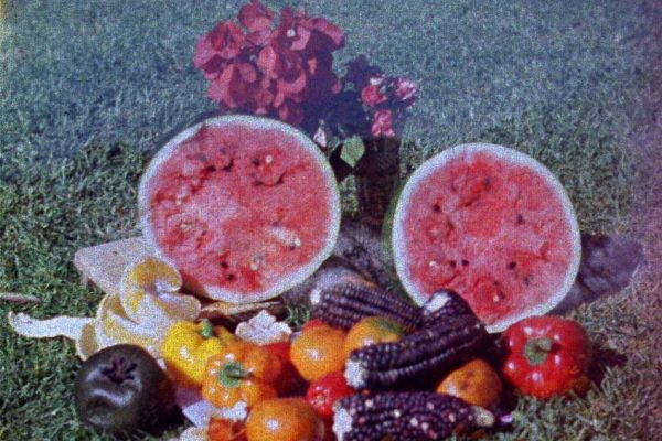 the-sun-quartet-part-4-farfromayotzinapa_orig
